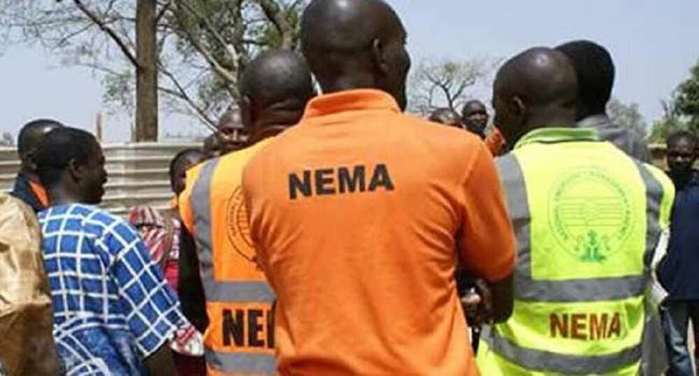 Sokoto: Mutane 80,405 za su samu tallafi daga gwamnatin tarayya - NEMA