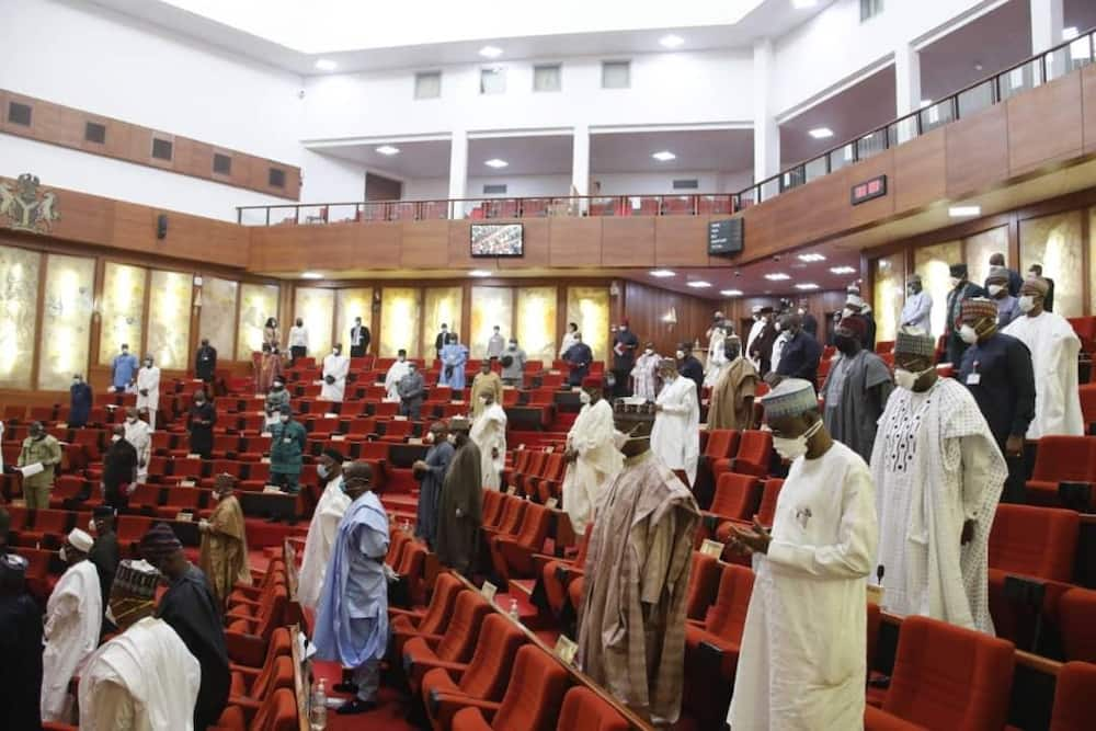 Nigeria will Suffer if Sharia Law is Introduced in Southwest, PFN Warns Senate