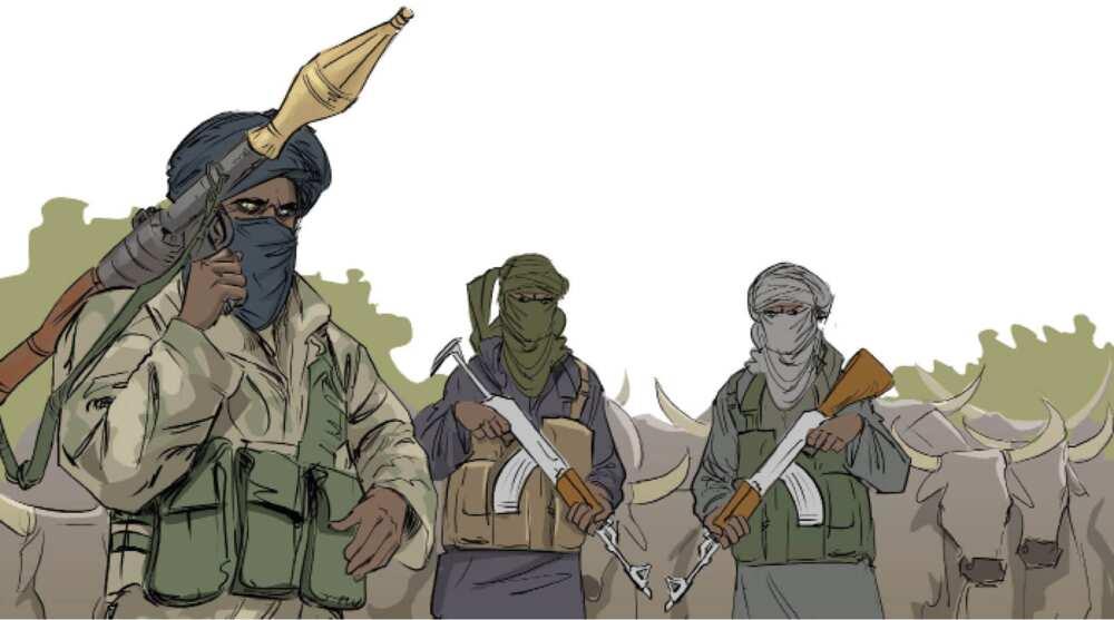 Ali Kachalla: Hatsabibin shugaban 'yan bindigan Zamfara da ya harbo jirgin NAF