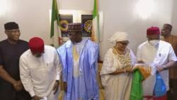 Anambra election: Stella Oduah reveals Buhari's achievements in southeast, blasts critics