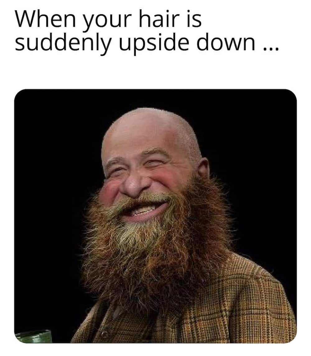 bald guy jokes