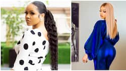 BBNaija: Nengi says she regrets not putting the fat removed from stomach into her bottom (video)
