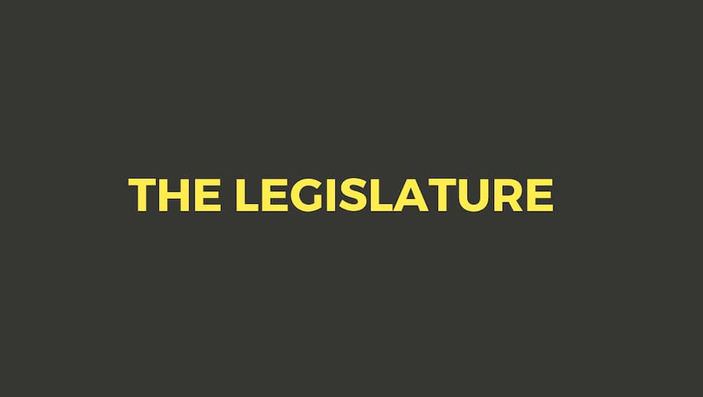 The legislative structure