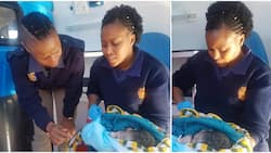 Kindhearted policewoman takes delivery of stranger who went into labour on the street (photos)