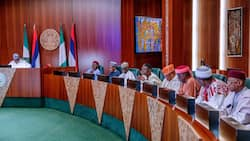 Restructuring: Afenifere, Ohanaeze, PANDEF drum support ahead of talks with ACF