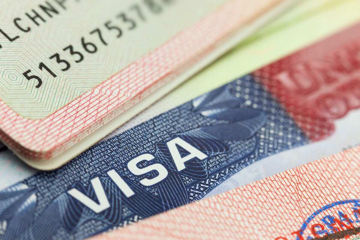 How to use Dropbox for US visa renewal in Nigeria ▷ Legit ng