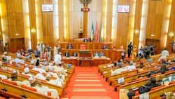 Senate leader Lawan reveals 2 major tasks before the National Assembly upon resumption