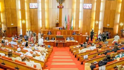Opinion: Electoral Amendment Bill: Two for the price of one By David Onmeje