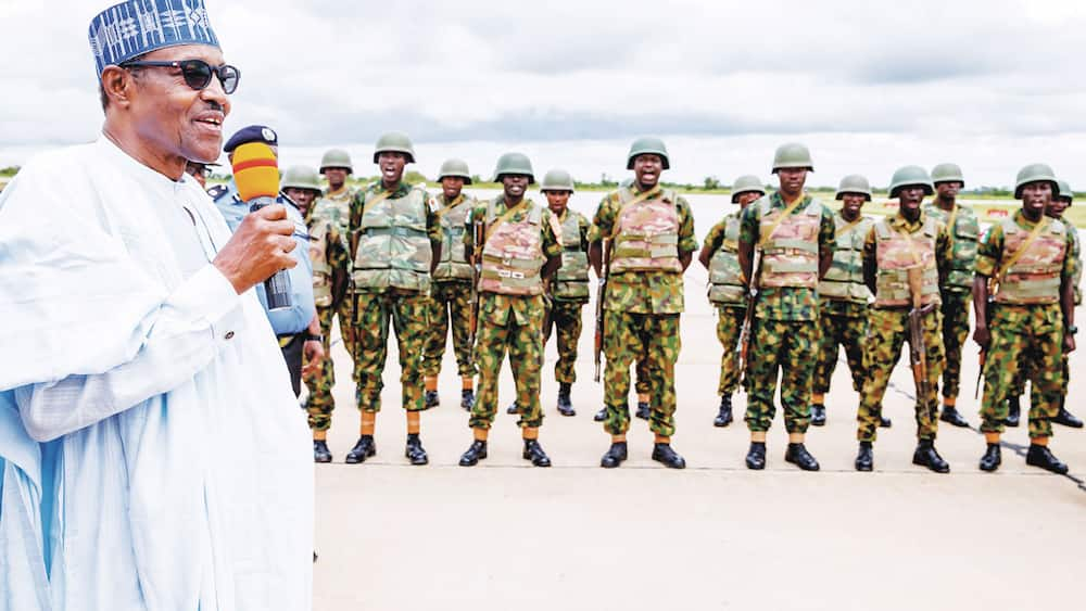 Yadda manyan jami'an soji suka watsar da yaki suka koma kiwon kifi da tsuntsaye a Borno
