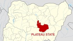 7 killed, 300 houses burnt in fresh attack on Plateau