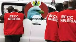 EFCC to Nigerians: We are not offering N1m to 'Yahoo Yahoo' informants