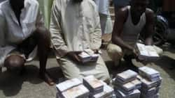 Syndicate dealing in fake currencies arrested in Gombe
