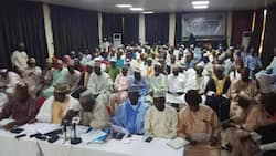 Southern govs ban: Miyetti Allah tells northern govs to revive 400 inactive grazing reserves