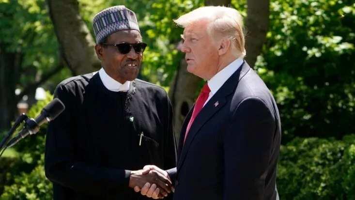 Wurare hudu da Trump da Buhari suka yi kamanceceniya da juna