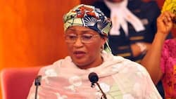 Debunk rumours of my resignation, I am committed to Buhari's re-election in 2019 - Mama Taraba