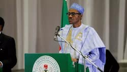 Ex-vice president canvasses support for FG's economic diversification plan