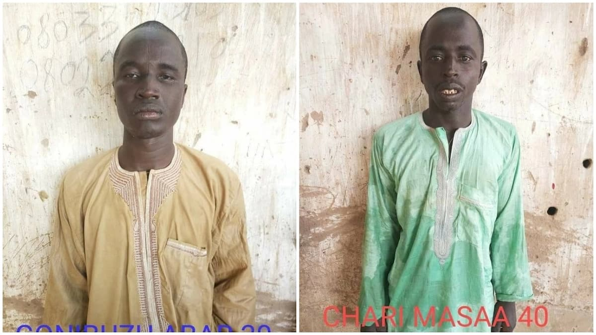 Nigerian troops nab 4 Boko Haram insurgents in Yobe (photos)