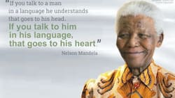 Do you know how many languages are spoken in Nigeria today?