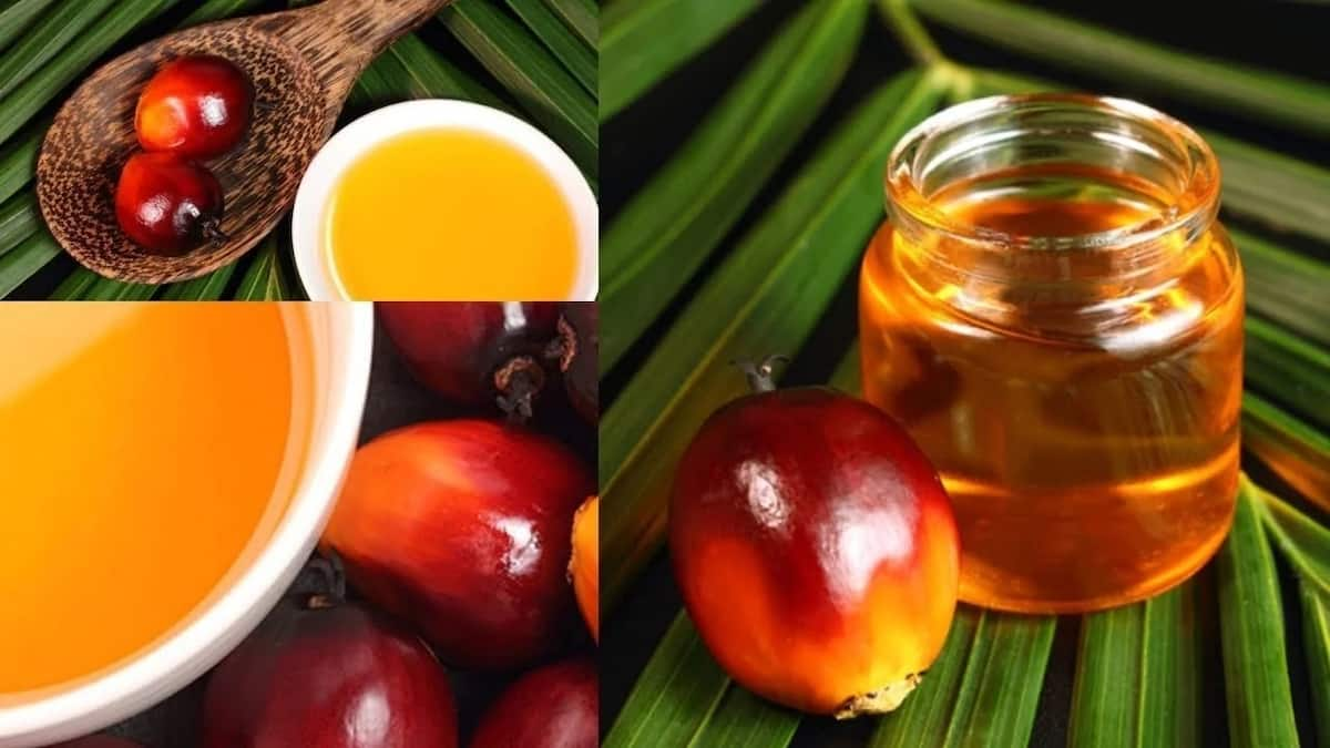 Palm kernel oil uses for skin and hair