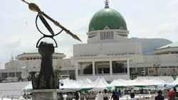 Insecurity: National Assembly to announce decision on declaration of bandits as terrorists