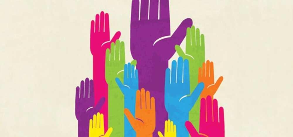 Democracy hands