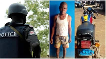 24 hours after prison release, man gets arrested for stealing (photo)