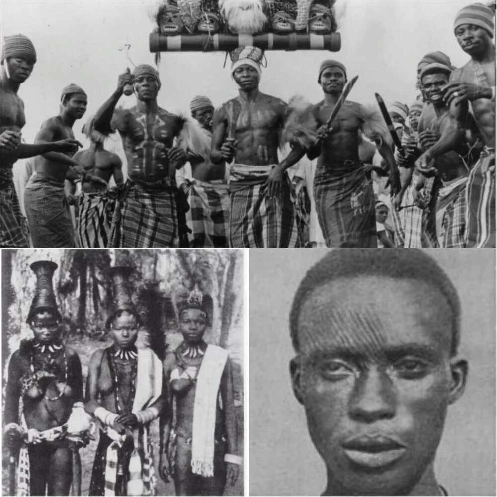 Origin of Igbo tribe in Nigeria