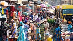 Just in: Nigeria's Inflation rate increases in December 2018 - NBS