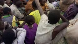 Army rescues 58 women abused by Boko Haram terrorists, recovers weapons (photos)