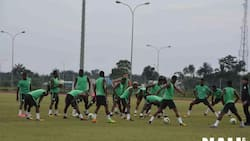 Here are the 11 Super Eagles players 'starting' against Zambia