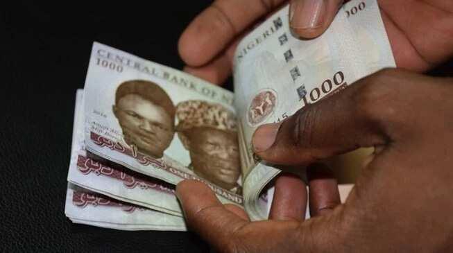 Types of money rituals in Nigeria ▷ Legit ng