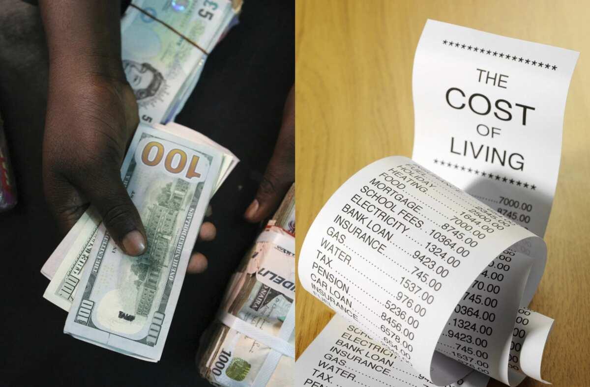 Average cost of living in Nigeria ▷ Legit ng