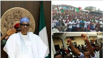 What Nnamdi Kanu's trial will cause in Nigeria - Presidency