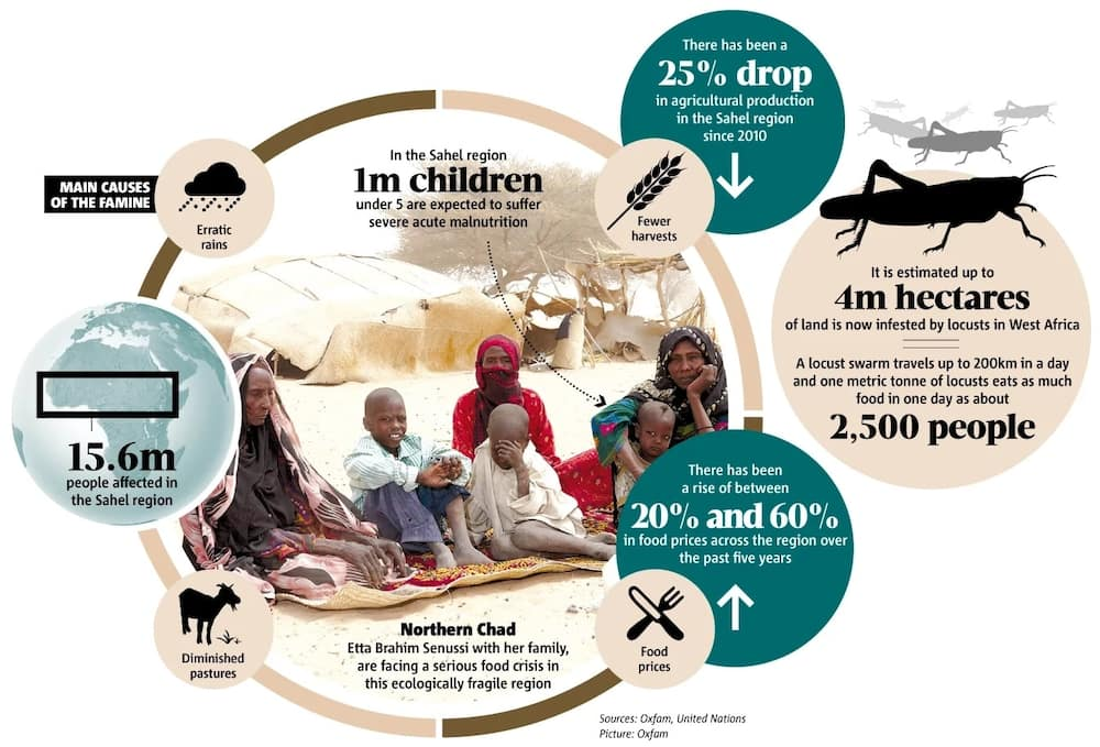 The infographic information on Sahel issue