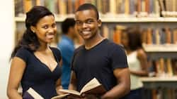 NNPC SNEPCO scholarship from Shell: eligibility and application