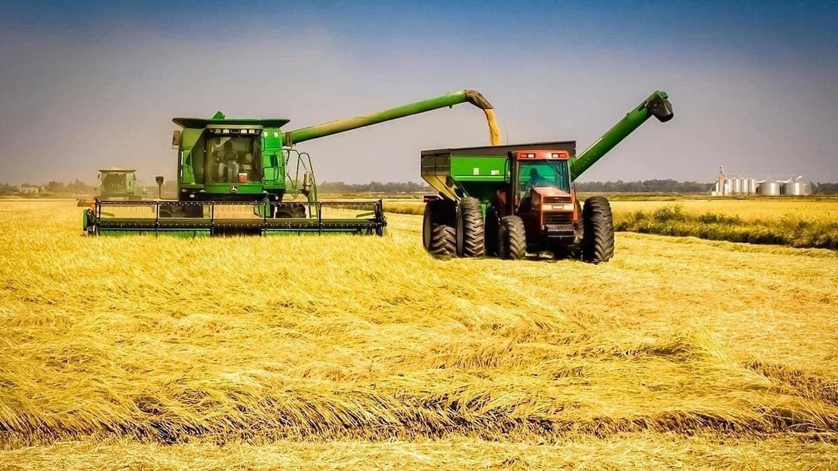 Bank of Agriculture loan application requirements and procedure