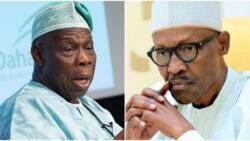 Obasanjo ga Buhari: Ta'addanci ne a yi ta karbo bashi ana barin na baya da biya