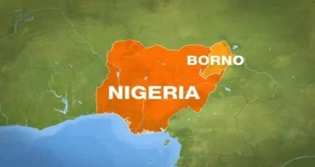 An shirya magabta biyu na siyasar jihar Borno bayan Ali ya dawo APC