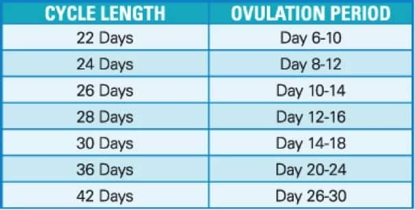 How to calculate the day of ovulation