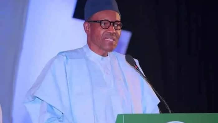 Buhari tells Nigerians who is to blame for hike in food prices, reveals his next action