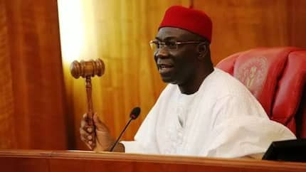 Attempted assassination: Ekweremadu slams police's burglary claim, threatens to release video of attack