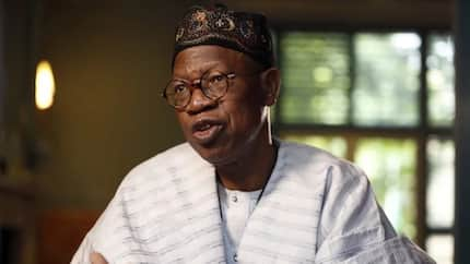 Farmers, herdsmen clashes due to population explosion - Lai Mohammed