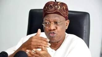 'Yan bindiga basu da tuta kamar Boko Haram da IPOB, ɓata gari ne kawai, Ministan Buhari, Lai Mohammed