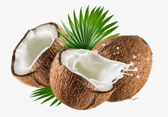 Coconuts during the pregnancy
