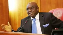 I believe restructuring of Nigeria is the way to go - David Mark