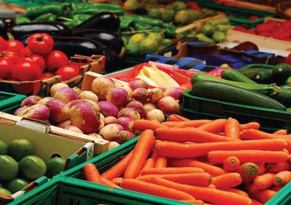 What are main agricultural products in Nigeria for export? ▷ Legit.ng