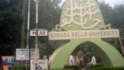Duba jerin kwasa-kwasan da ake yi a Jami'ar Ahmadu Bello dake Zaria