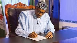 NGF tackles Buhari, says president didn't consult widely on judicial autonomy, Executive Order 10