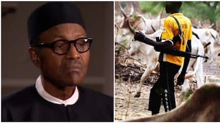 Herdsmen attacks: Group drags Buhari, Miyetti Allah to court, seeks N550 billion damages for victims