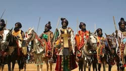 Kano state cancels Sallah Durbar, other festivities, gives reason